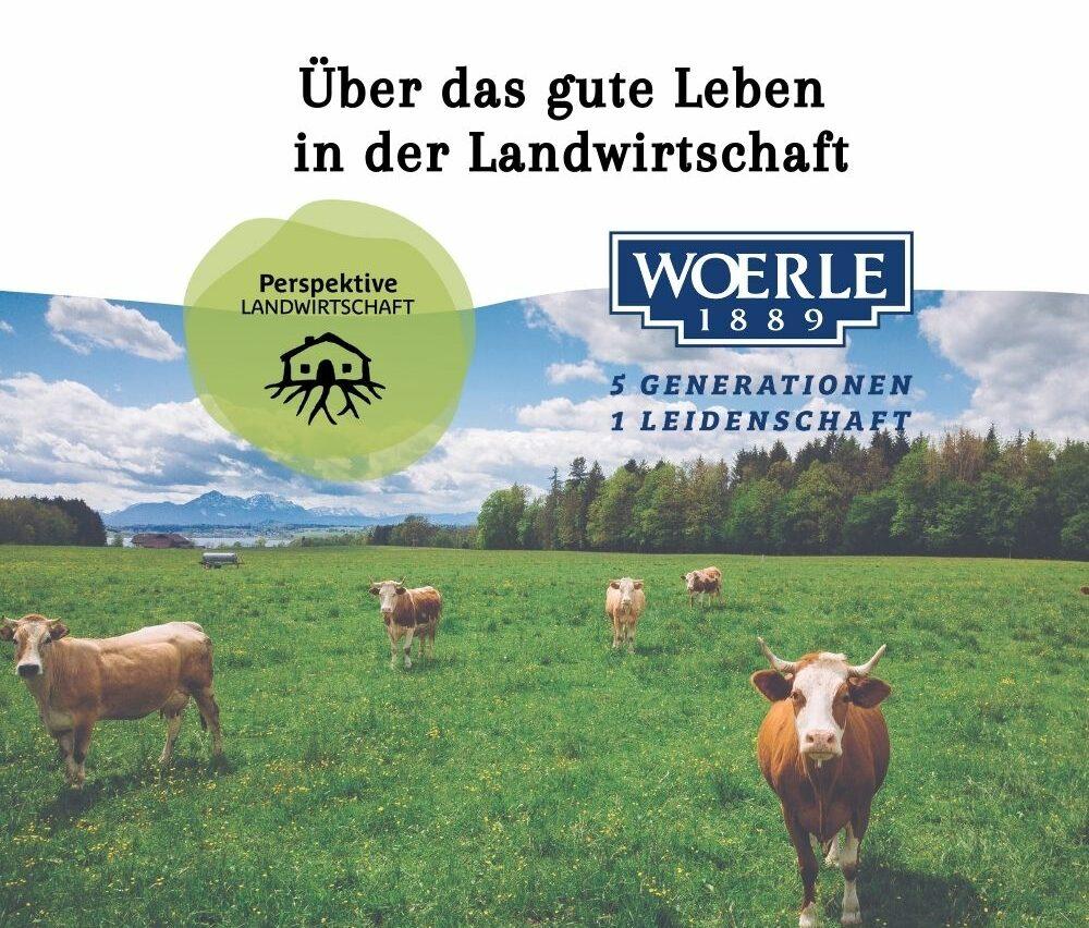 Perspektive Landwirtschaft Gebrüder Woerle Hofnachfolge Freizeit in der Landwirtschaft Hofübergabe Salzburg HBLA Ursprung PELA