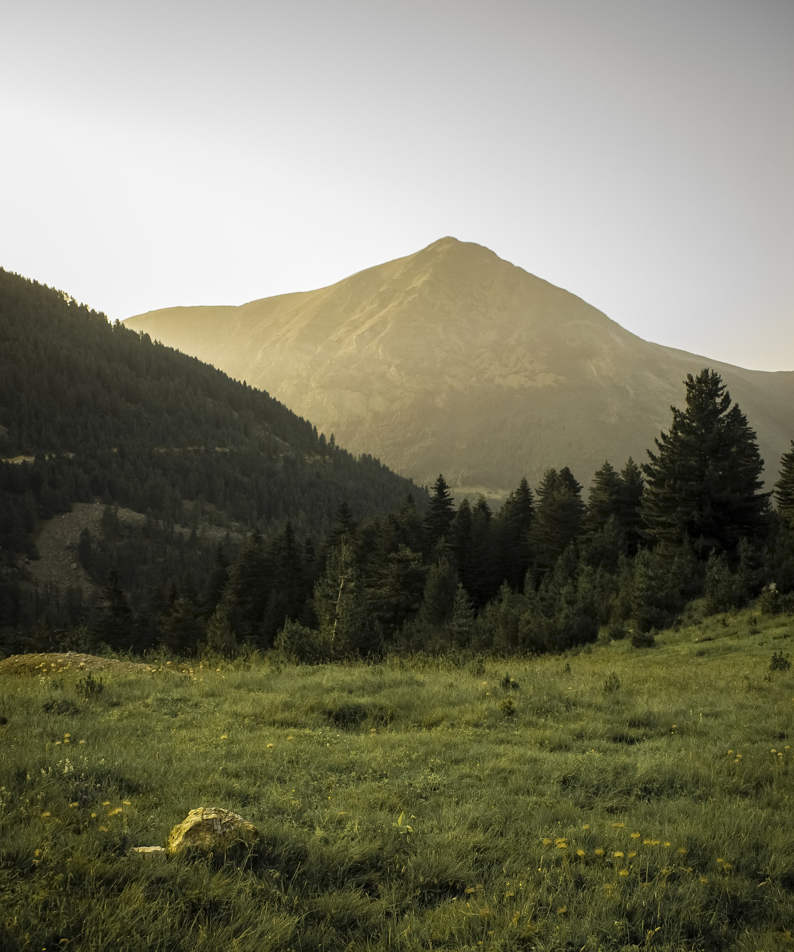 mountains-6479150_1920